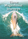 Three Magnificen Journeys by Kimberly Jentzen